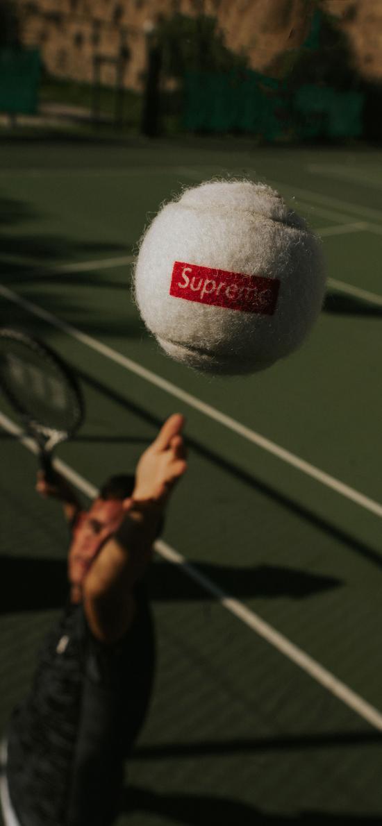 网球 球场 运动 球类