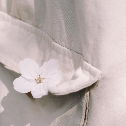 櫻花 鮮花  口袋 衣服