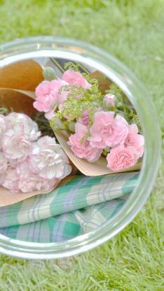 康乃馨 鮮花 花束 草坪 鏡子
