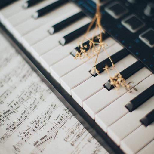 钢琴 音乐 乐器 乐谱 干花 键盘