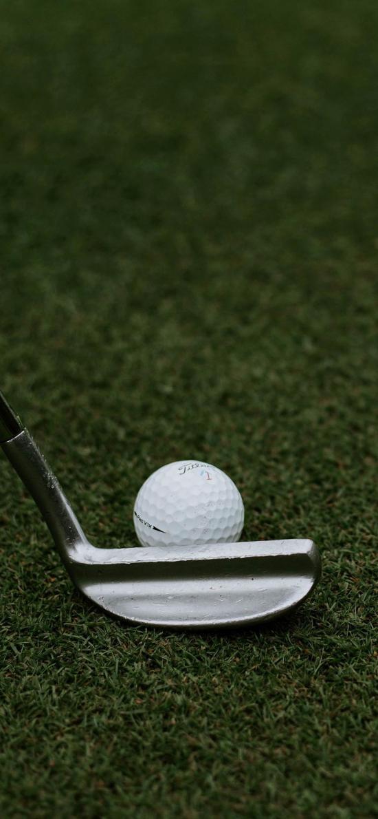 高尔夫球 运动 球杆 草坪 绿色