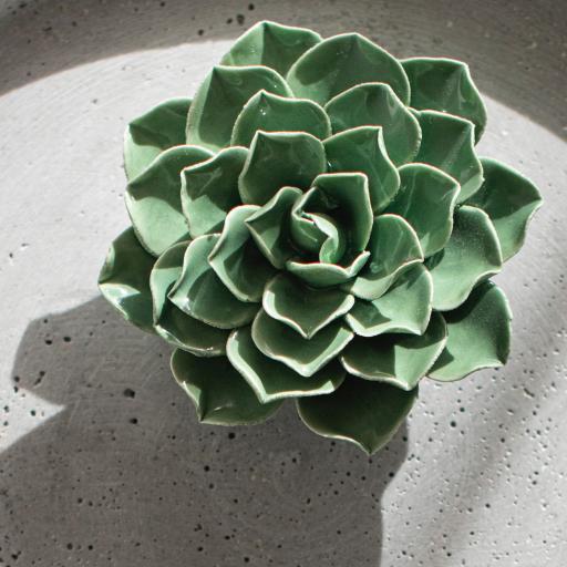 瓷器 飾品 裝飾 綠植 光影