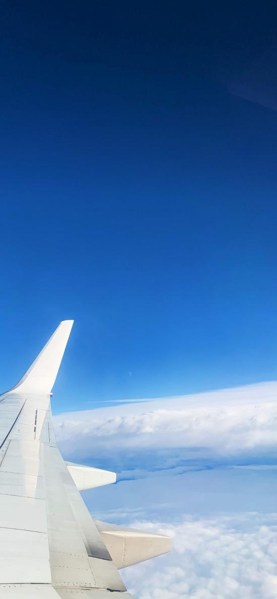 机翼 飞机 云海 高空