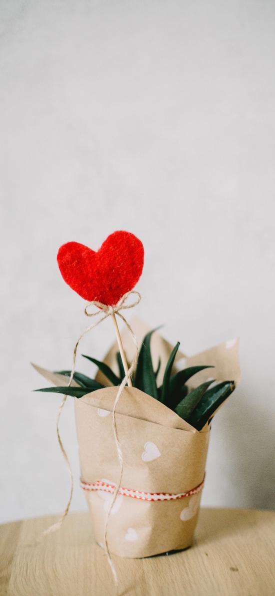 愛心 綠植 包裝 飾品