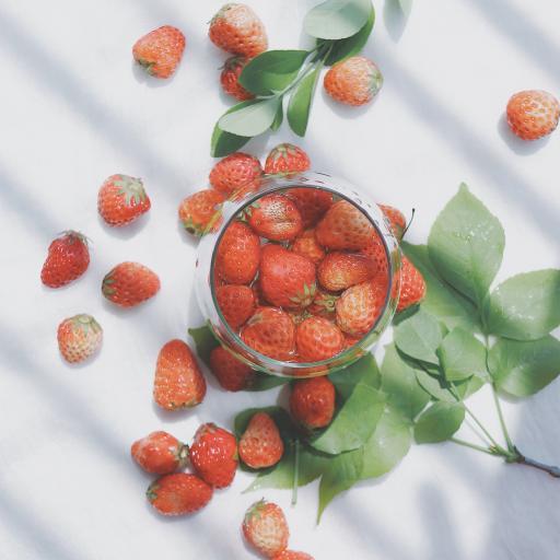 草莓 水果 果實 葉子