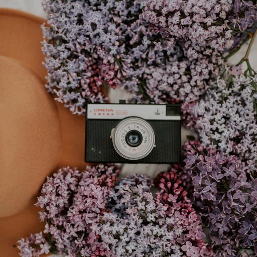 静物 相机 鲜花 丁香花