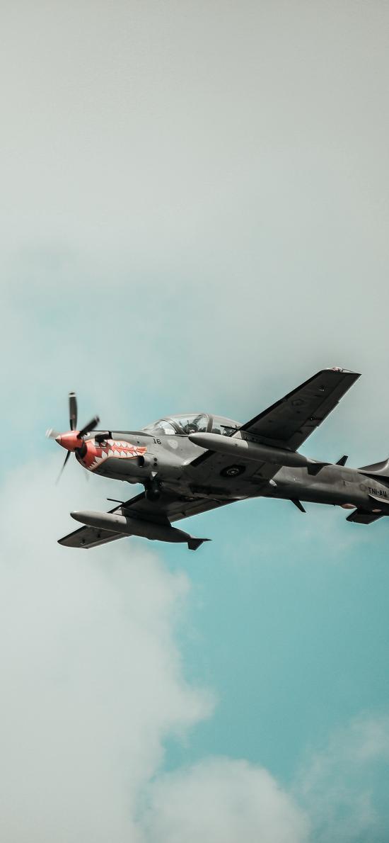 戰斗機 飛機 飛行 航空