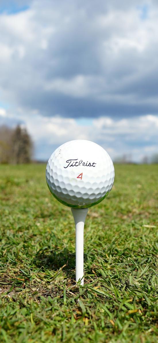 高尔夫球 运动 球场 草坪