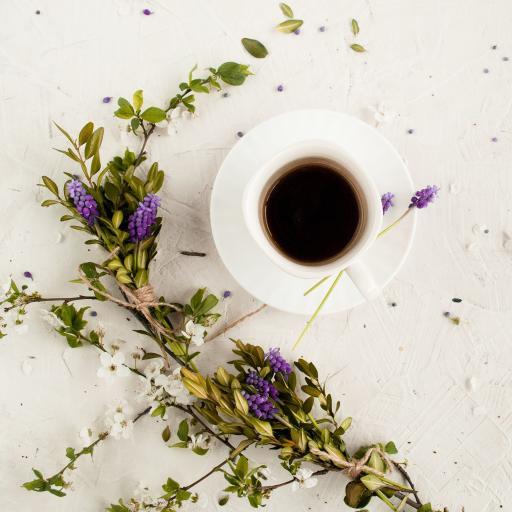 咖啡 花草 杯具 枝叶