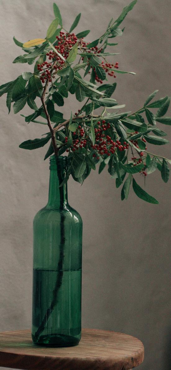 樹枝 漿果 掛果 花瓶 枝葉