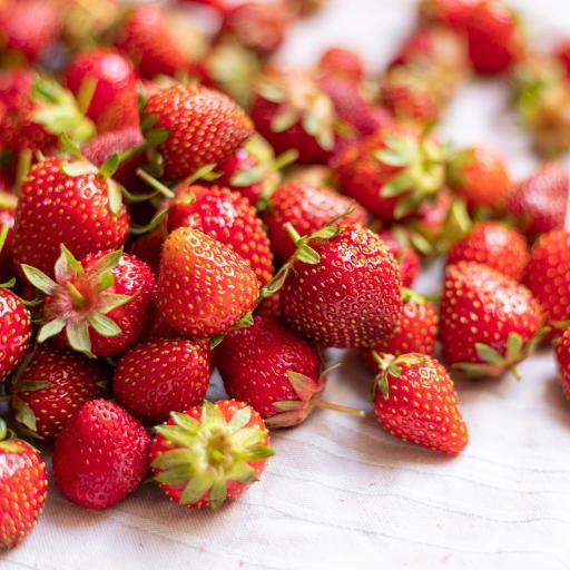 草莓 水果 新鮮 顆粒