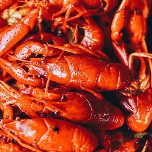 小龙虾 料理 河鲜 红色 烹饪