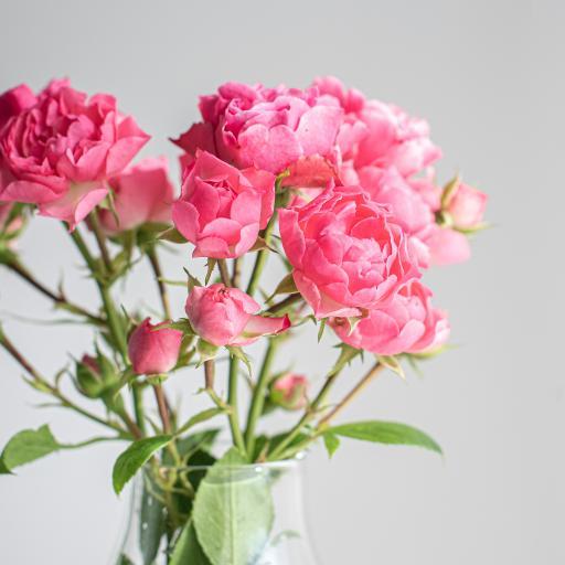 鲜花 花瓶 玫瑰 花束