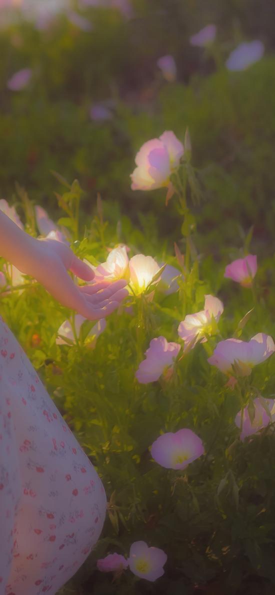 鲜花 盛开 花丛 手 唯美 碎花裙