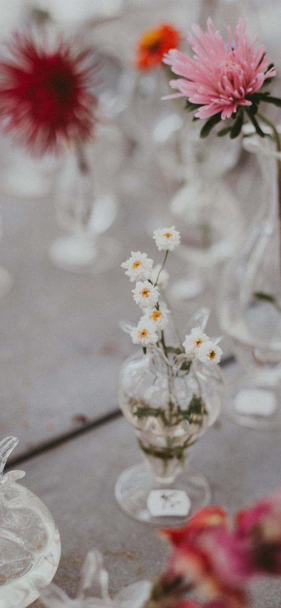 花瓶 玻璃 插花 雏菊