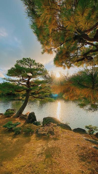 山水 湖水 太阳 树木
