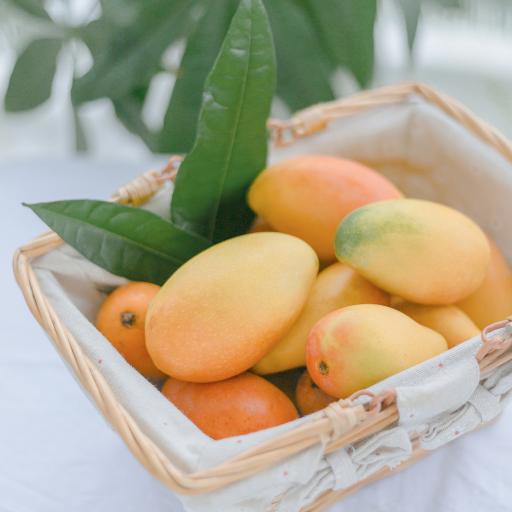 芒果 水果 果实 新鲜