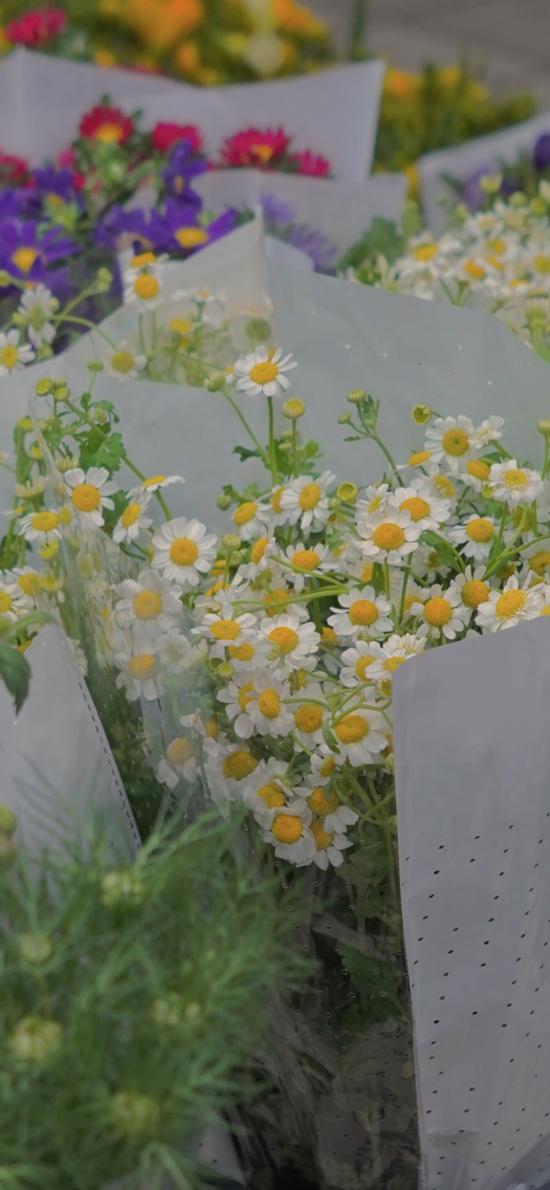 菊花 花束 花藝 鮮花 枝葉