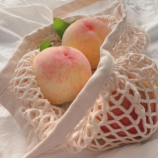 桃子 水果 果实 新鲜 网袋