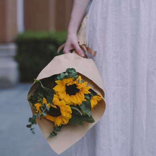 鲜花 花束 向日葵 太阳花