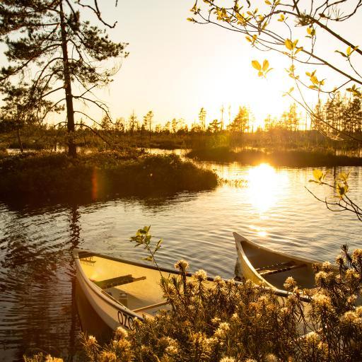 自然 湖泊 船只 阳光 美景