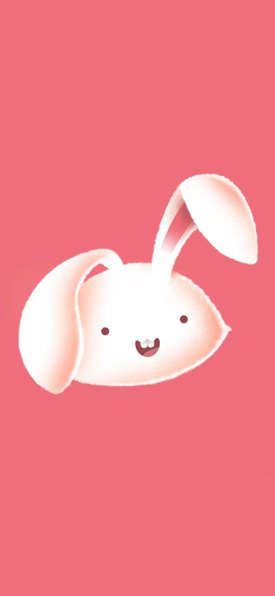 可爱 卡通 兔子 粉