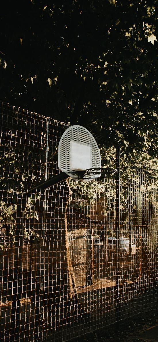 籃球 球架 球框 鐵絲網 運動