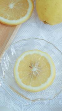 柠檬 切片 水果 果肉