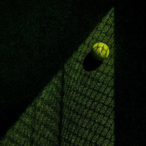 网球 运动 球场 绿色 网 影子