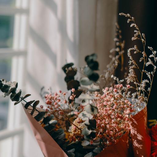 花束 鲜花 尤加利叶 阳光