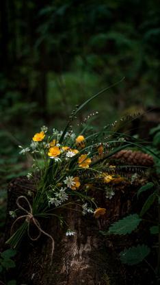 郊外 花束 鲜花 小野花