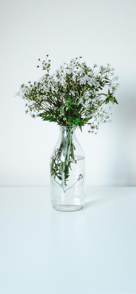 花束 鲜花 枝叶 花瓶