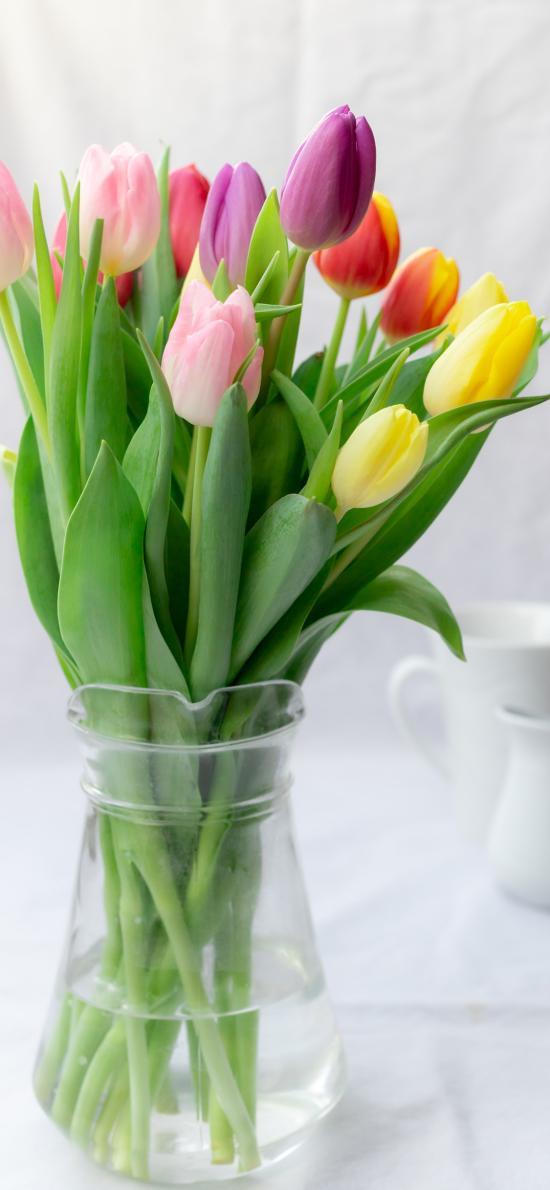 郁金香 鲜花 花束 花瓶