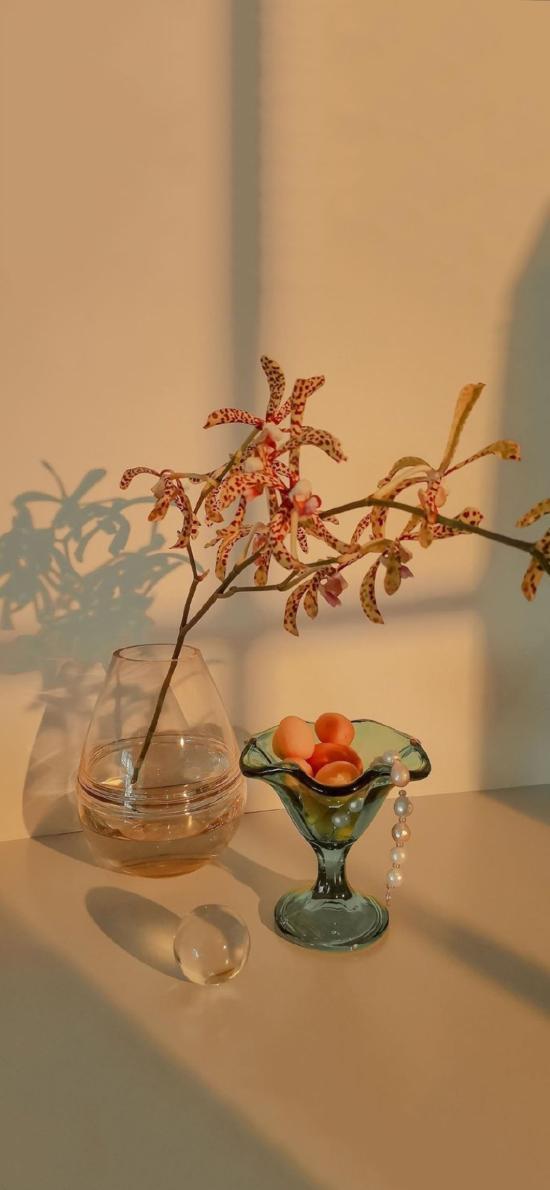 花瓶 玻璃 插花 兰花 珍珠