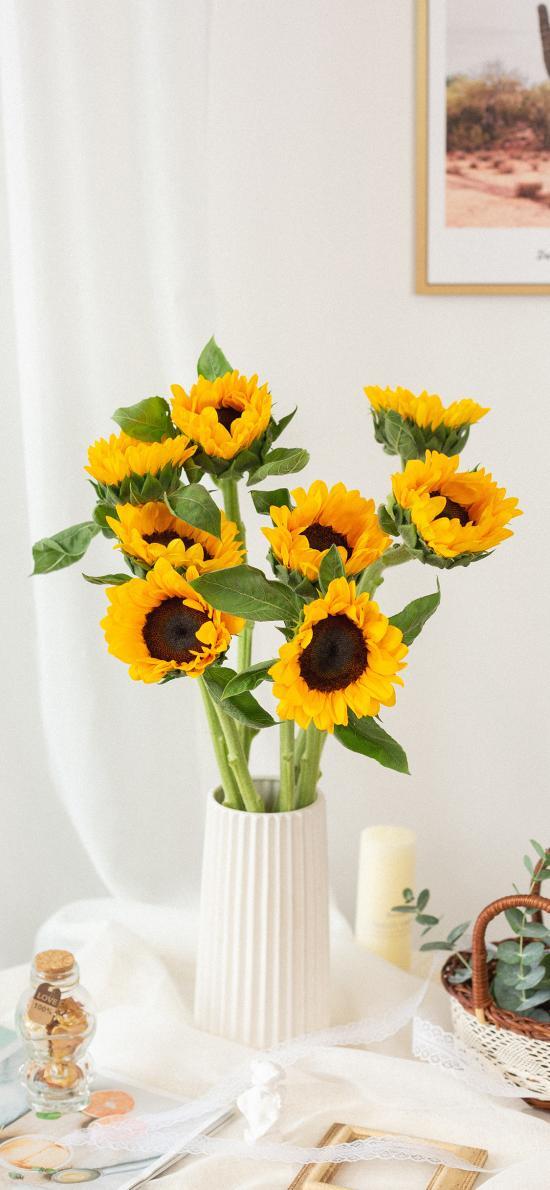 葵花 鲜花 花瓶 绿植 向日葵