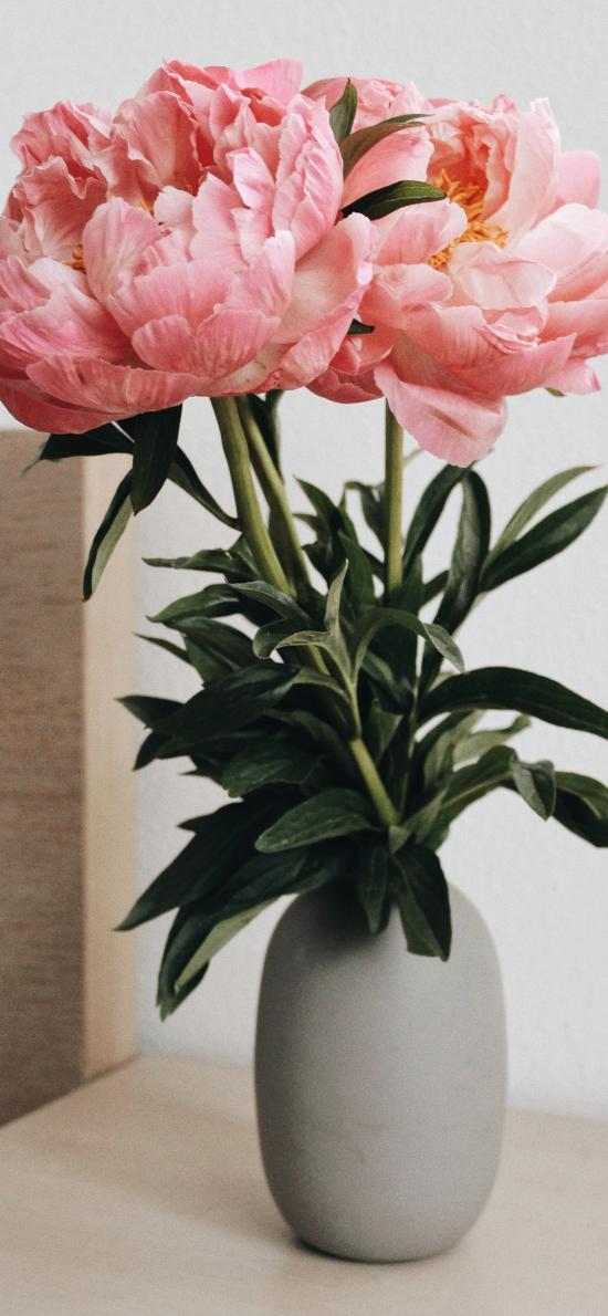 鲜花 花瓶 枝叶 牡丹