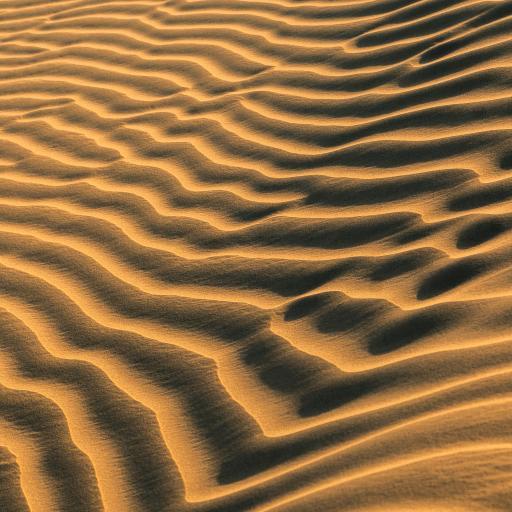 沙漠 流沙 光影
