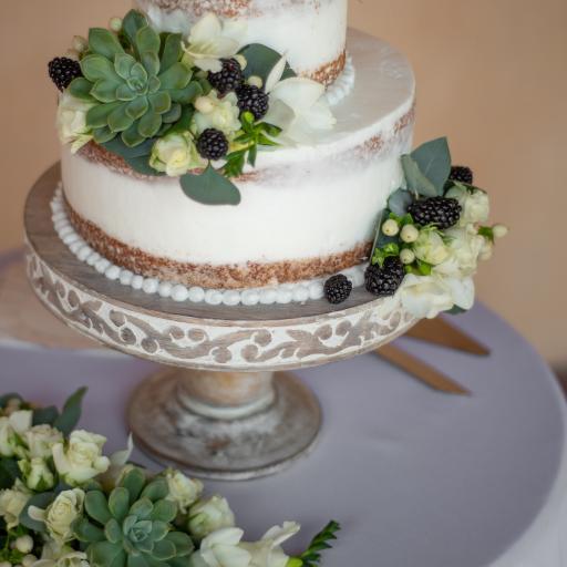 蛋糕 多肉 树莓 绿植 装饰
