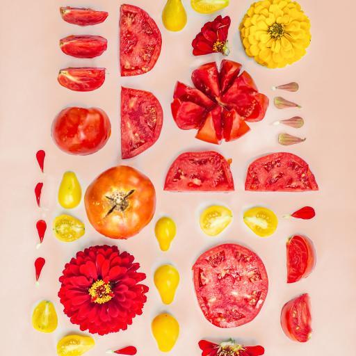 番茄 西红柿 菊花 花朵