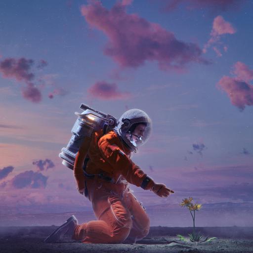 插图 宇航员 鲜花 星空 梦幻