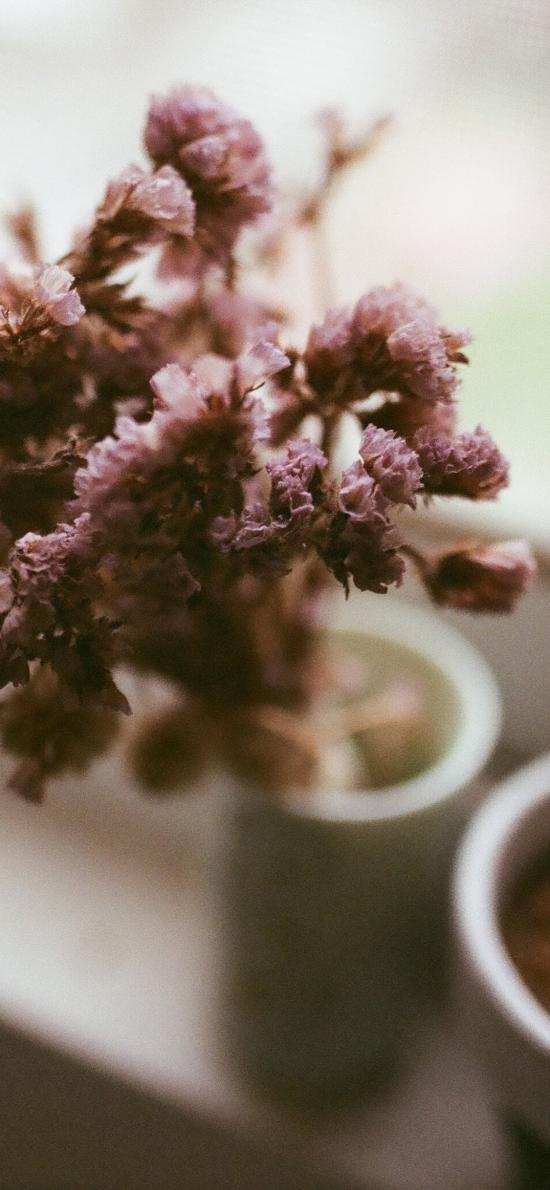 窗台 花瓶 插花 鲜花