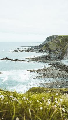 大海 悬崖 海峡美景 白色小花