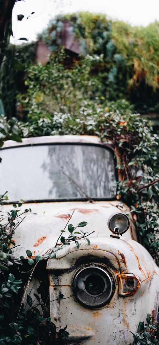 郊外 小汽车 废弃 怀旧