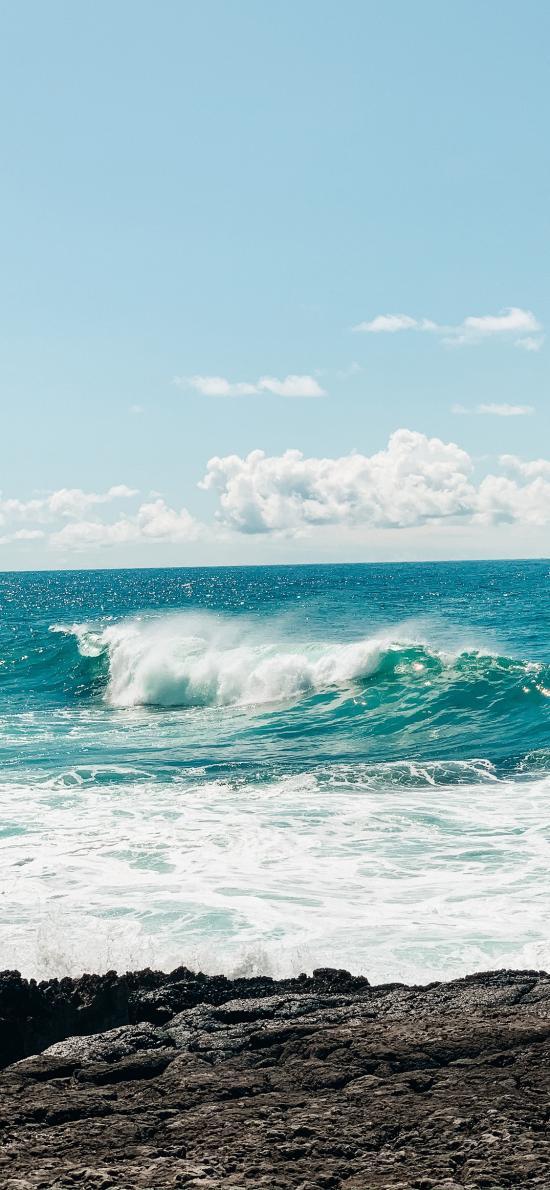 大海 海浪 海岸 波浪