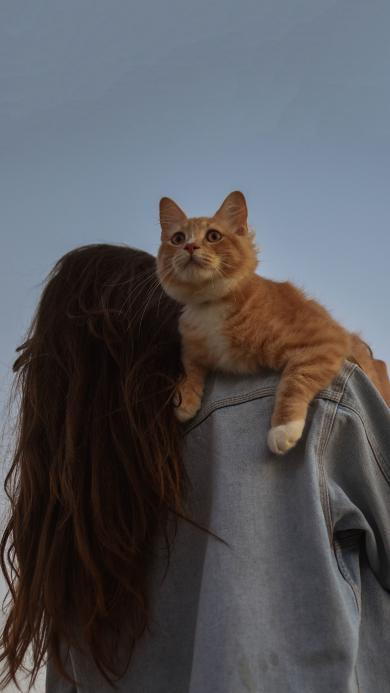 猫咪 喵星人 宠物 背影 女孩