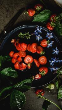 草莓派 水果 鲜花 叶子