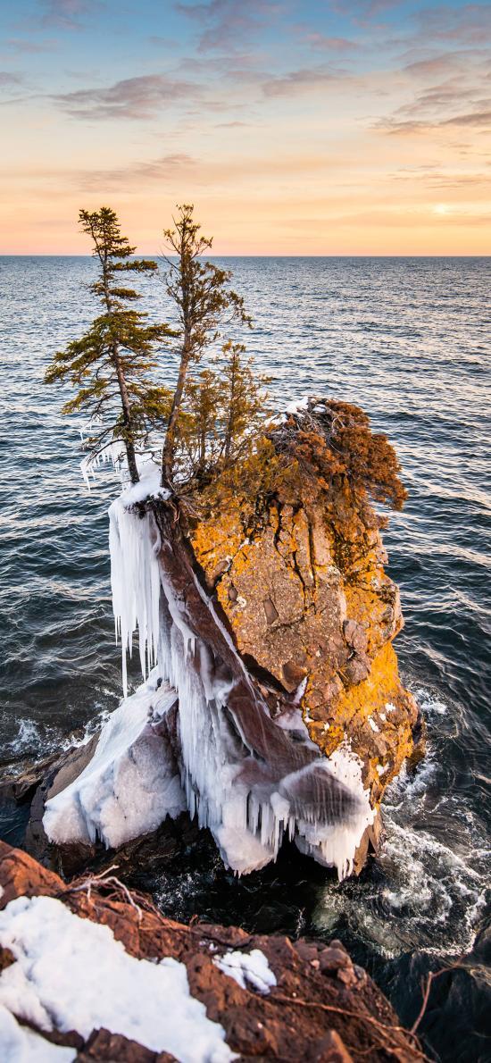 大海 海景 岩石 树木