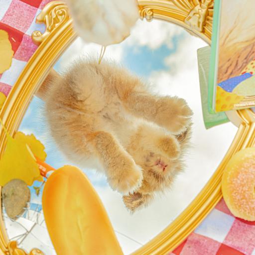 兔子 宠物 可爱 镜子 法棍 @名侦探牛奶喵