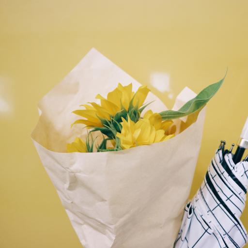 向日葵 鲜花 花束 黄色 盛开